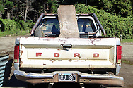 Ford Truck with hard wood load in Quilaquina, Argentina