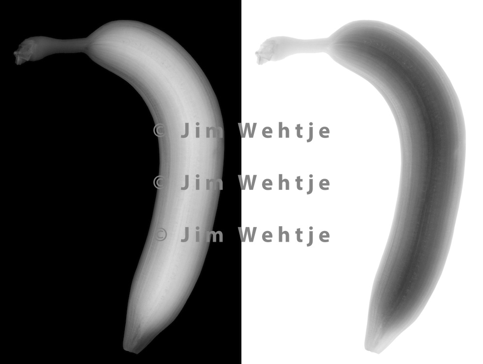 X-ray image of a banana fruit (grayscale) by Jim Wehtje, specialist in x-ray art and design images.