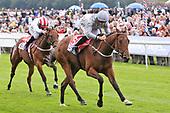 Horse Racing Ebor Festival 220819