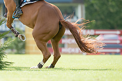 Epaillard Julien (FRA) - Pigmalion du Rozel<br /> Speed Class<br /> International Horse Show - Hickstead 2014<br /> © Hippo Foto - Jon Stroud