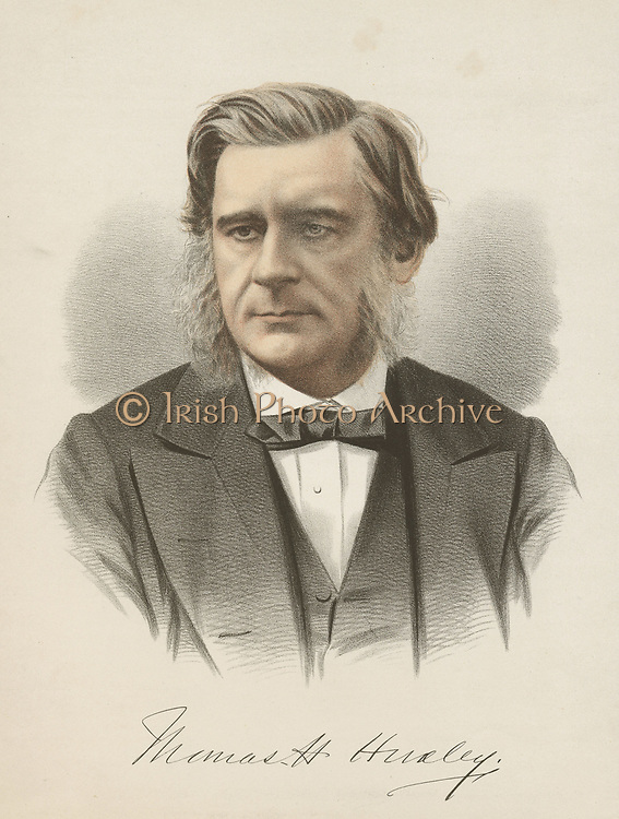Thomas Henry Huxley (1825-1895) British biologist, champion of Darwin. From 'The National Portrait Gallery', Cassell, Petter & Galpin, London, c1880. Tinted lithograph