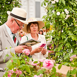 LONDON, UK - 22 May 2012: visitors at the RHS Chelsea Flower Show 2012.