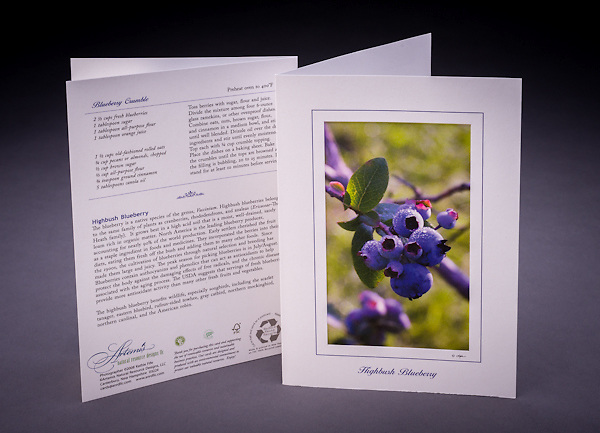 Lovely to look at and yummy to eat!  Includes one of my favorite seasonal recipes and some interesting facts about blueberries. <br />