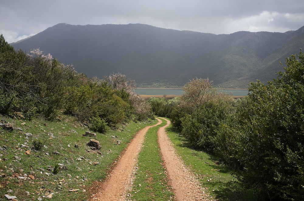 The road to the ruins of Agathoto village, Greece