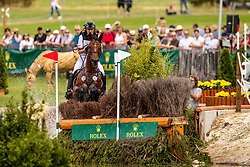 Klimke Ingrid, GER, Horseware Hale Bob<br /> CHIO Aachen 2019<br /> Weltfest des Pferdesports<br /> © Hippo Foto - Dirk Caremans<br /> Klimke Ingrid, GER, Horseware Hale Bob