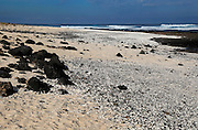 Beach of white sand, near Majanicho on north coast of Fuerteventura, Canary Islands, Spain