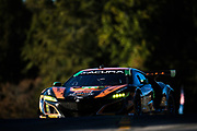 October 11-13, 2018: IMSA Weathertech Series, Petit Le Mans: 86 Michael Shank Racing, Acura NSX GT3, Katherine Legge, Alvaro Parente, Trent Hindman