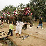 During ceremonies at the second annual Elephant Festival in Paklay, Laos, Thursday, Feb. 14, 2008.