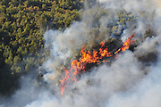 Huge forest fire rages on the Carmel Mountain South of Haifa Israel. International efforts to contain the fire have been going on for the last 3 days. December 4th 2010.
