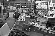 Nederland, Nijmegen, 20-2-1980Productie bij de Dobbelman zeep en wasmiddelen fabriek. Deze stond in de wijk Bottendaal, en er werkten al vroeg gastarbeiders uit Marokko en Turkije.Foto: Flip Franssen/Hollandse Hoogte