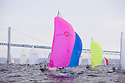 Pink Storm leading the Viper 640 Class downwind during Bacardi Newport Sailing Week, day 3.