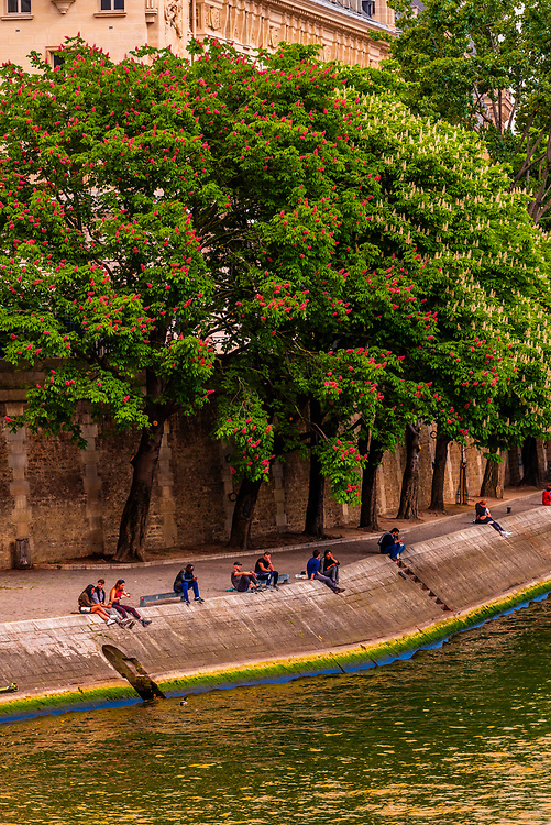 People relaxing on the banks of the RIver Seine in springtime, Paris, France.