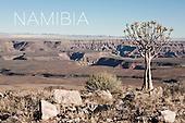 Namibian Roadtrip