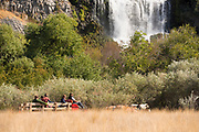People enjoying a free Wagon ride tour under a beautiful waterfall during the Thousand Springs Art Festival at Ritter Island near Hagerman, Idaho.