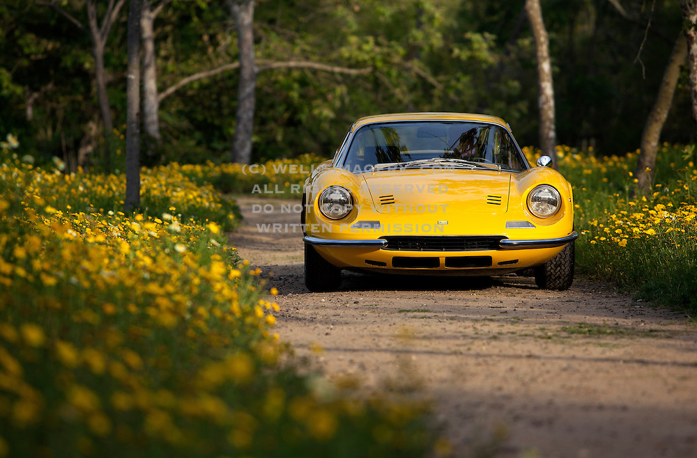 Automotive Photographer and Promotional Writer Randy Wells, Image of a yellow classic vintage sports car on a dirt road, Ferrari Dino 246 GT coupe, Costa Mesa, California, American west coast, property released