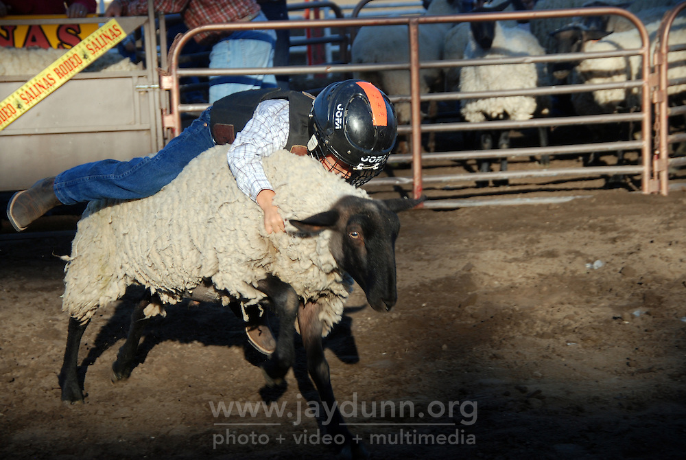 """A yoiung contestant shows his determination at the """"Mutton Bustin"""" contest at the 102nd California Rodeo Salinas, which opened July 19 for a four-day run."""