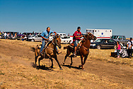 Fort Belknap Indian Reservation, Milk River Memorial Horse Races, Men Half Mile Race, start. .