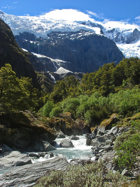 along the Rob Roy Glacier tramp
