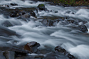 Stream in the Columbia River Gorge National Scenic Area