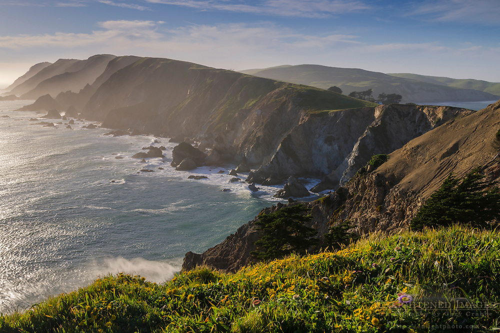 Point Reyes headlands, Point Reyes National Seashore, Marin County, California