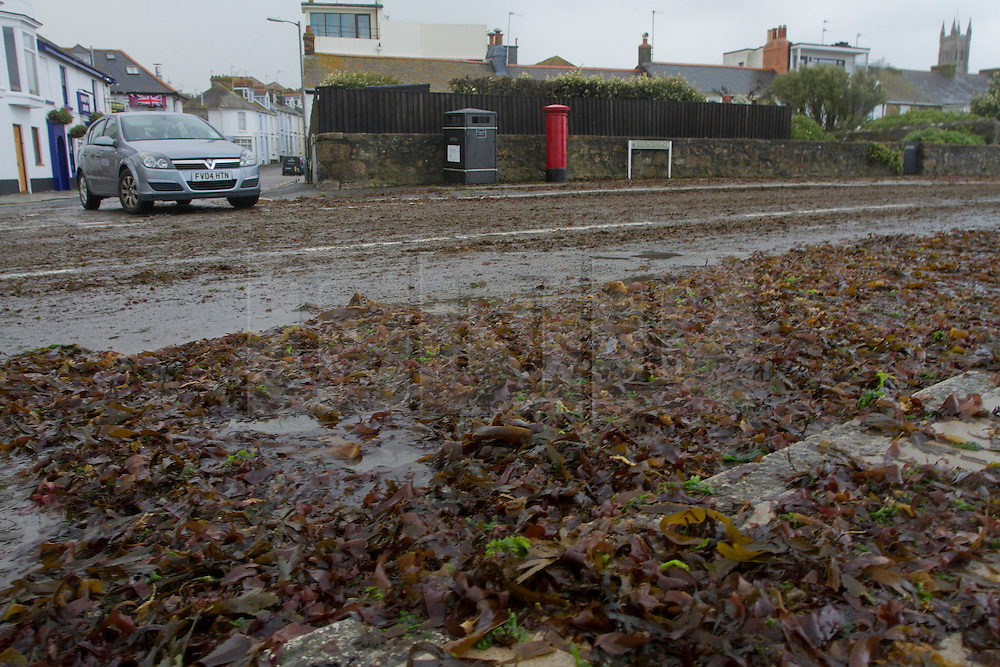© Licensed to London News Pictures. 15/08/2012. Penzance, UK. A car drives through seaweed deposited on the road by strong winds and large waves along Penzance Promenade. Photo credit : Ashley Hugo/LNP