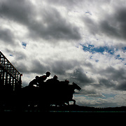 Horses and jockey's jump from the gate at the start of the race during a day at the Races at the Gore Race Meeting, Gore, Southland, New Zealand. 18th December 2011. Photo Tim Clayton