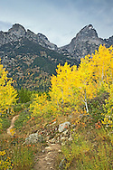 Hiking Trail, Grand Tetons, Autumn Color, Grand Teton National Park<br />