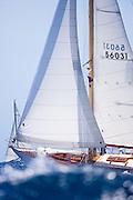 Lone Fox sailing in the 2010 Antigua Classic Yacht Regatta, Windward Race, day 4.