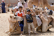 Camel herders and children, at Al Ain Abu Dhabi, United Arab Emirates