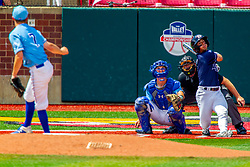 25 May 2019: Zach Frey pitches, Max Wright catches, Andres Sosa and Bill McGuire makes the calls. Missouri Valley Conference Baseball Tournament - Dallas Baptist Patriots v Indiana State Sycamores at Duffy Bass Field in Normal IL<br /> <br /> #MVCSPORTS