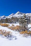 Fresh snow on Mount Abbot and Little Lakes Valley, John Muir Wilderness, Sierra Nevada Mountains, California
