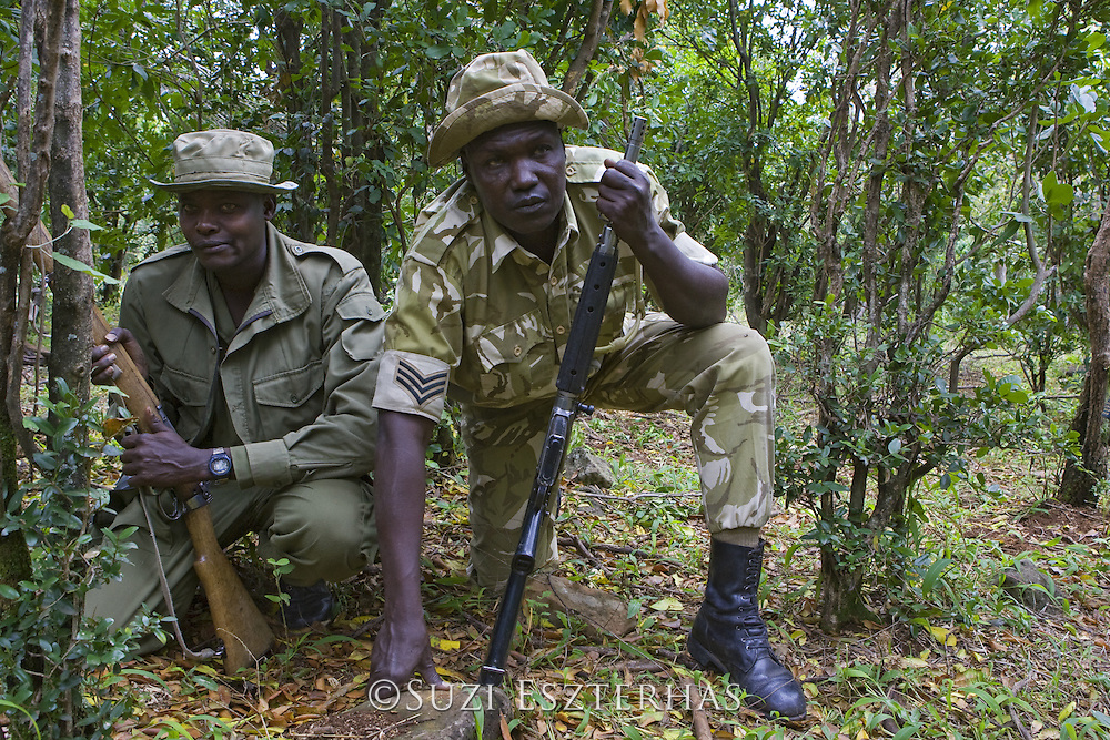 Mara Conservancy Rangers on anti-poaching patrol<br /> Masai Mara Conservancy, Kenya