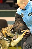 West Midlands Police Dogs & Demonstration