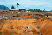 MEXICO, AGRICULTURE, CHIAPAS STATE soil erosion in the Chiapas highlands as a result of deforestation near San Cristobal de las Casas