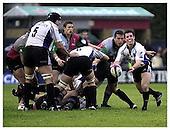 Harlequins v Bath. 2-11-2002. Season 2002-2003
