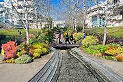 J. Paul Getty Museum Garden Water Sculpture, water in a stream criss-crosses the walkway,