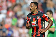 AFC Bournemouth's striker Callum Wilson during the Barclays Premier League match between Bournemouth and Sunderland at the Goldsands Stadium, Bournemouth, England on 19 September 2015. Photo by Mark Davies.