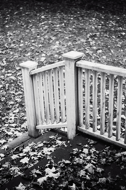 White wood porch railing with scattered leaves