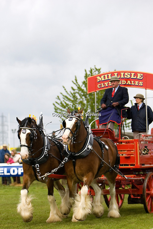 Newark and Notts Show 2010<br />