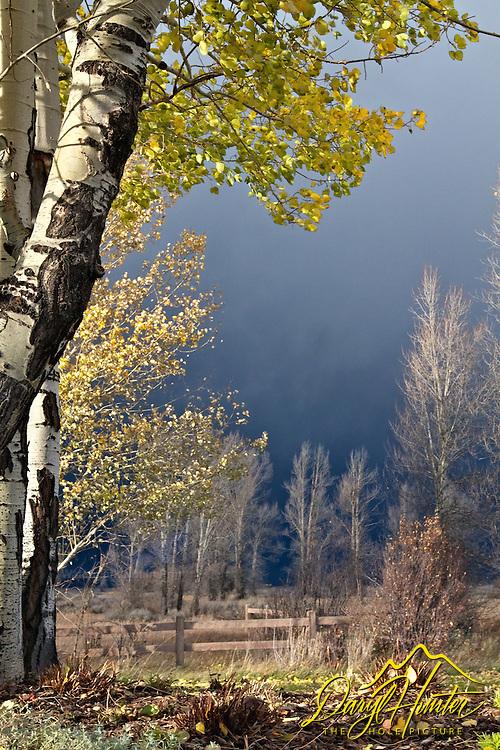 Autumn Thunderstorm, Jackson Hole, Wyoming