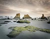 Bandon beach seastacks, Bandon Oregon