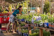 20130509 Plant Sale Preview