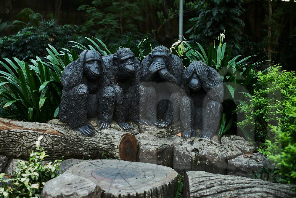 Chimpanzee statue in a park of Saigon Zoo and Botanical Garden, Ho Chi Minh city, Vietnam, Southeast Asia