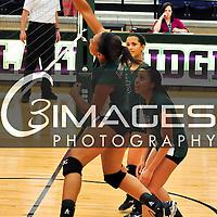 JV Lady Eagle Volleyball
