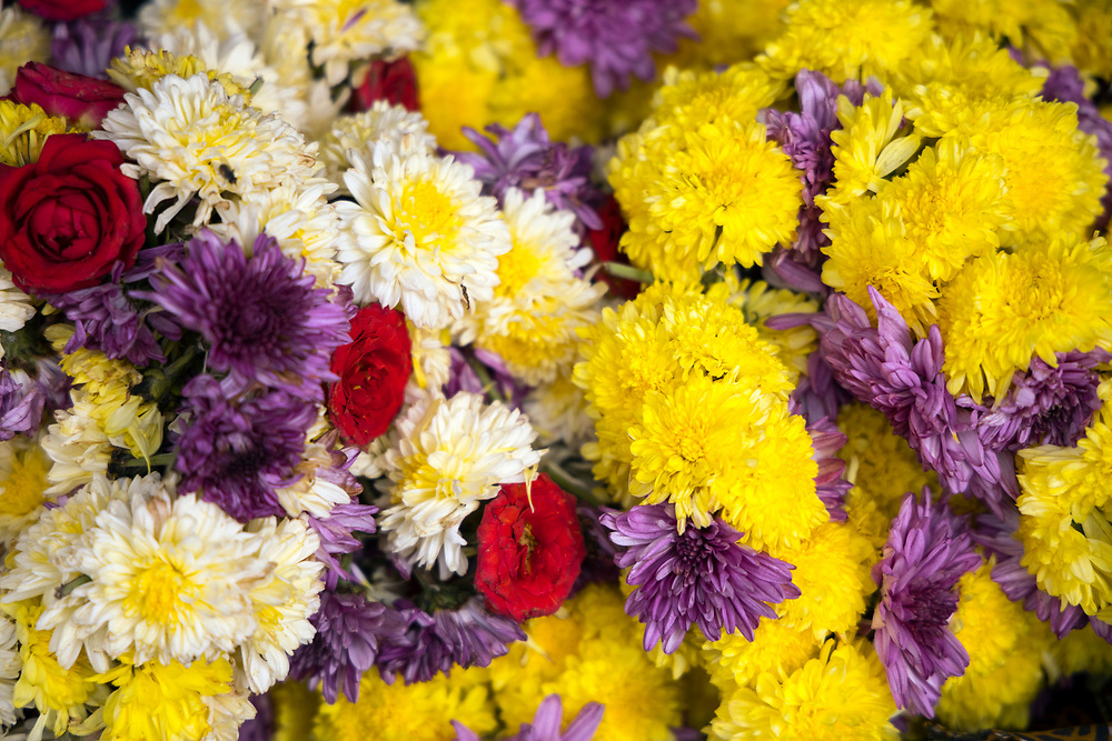PUTTARPATHI, INDIA - 27th October 2019 - Close-up of flowers for sale at a market in Puttarpathi, Andhra Pradesh, South India