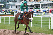 Ucello Conti and JJ Codd head for the start of the 4.05PM The Randox Health Foxhunters' Steeple Chase (Class 2) 2m 5f during the Grand National Festival Week at Aintree, Liverpool, United Kingdom on 4 April 2019.