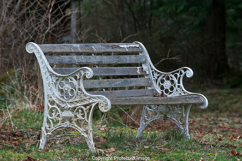 Old wooden bench.. , Courtenay, British Columbia, Canada, Isobel Springett