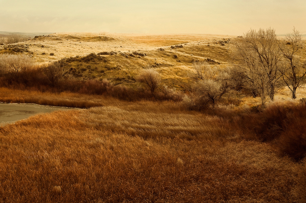 Late fall scene of fields and wetlands in Southwest Washington, United States