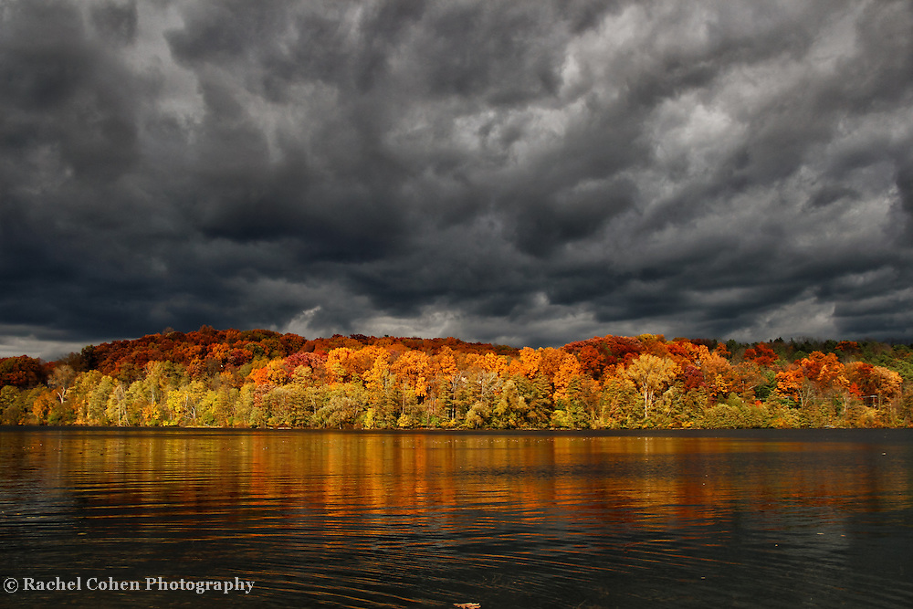 &quot;On the Move&quot;<br />