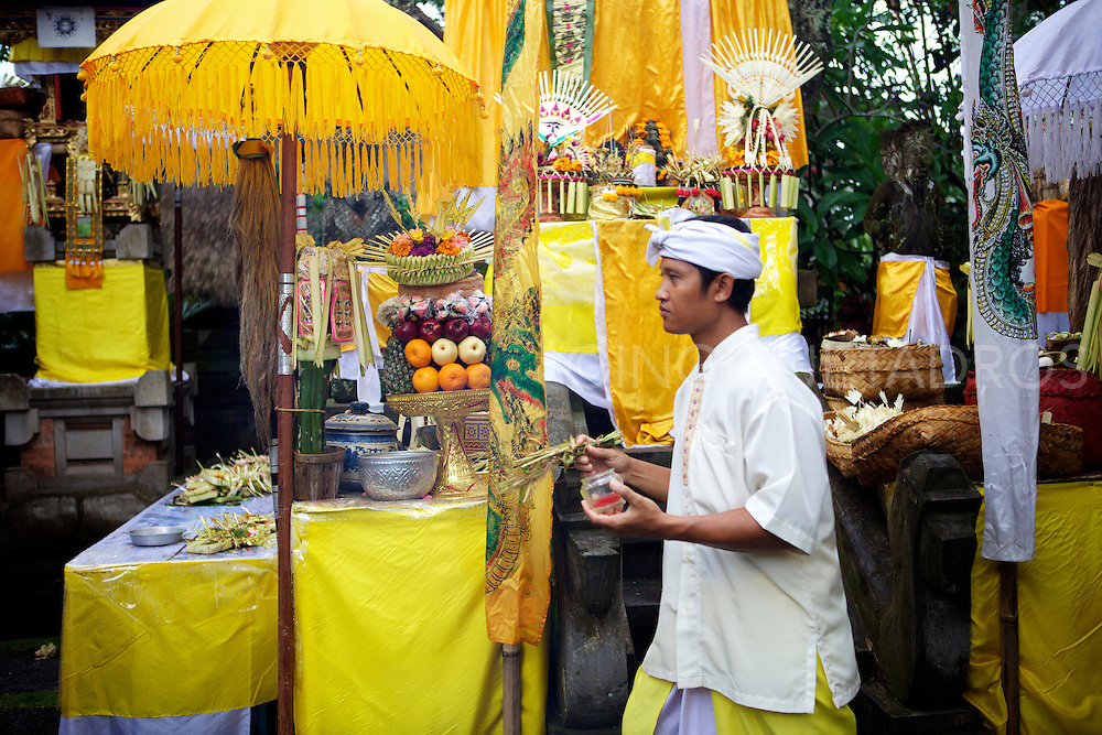 Festivals and ritual ceremonies are the important part of Balines daily life, held according to Balinese Calender.<br /> This Ceremony is for Prosperity and is for flourishing, thriving, social status and good fortune.<br /> Prosperity often encompasses wealth but also includes other factors which are independent of wealth to varreying degrees, such as happiness and health.<br /> Bali, Ubud, 2013<br /> &copy;Ingetje Tadros www.ingetjetadros.com